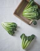 친환경 잎채소 비타민 100g